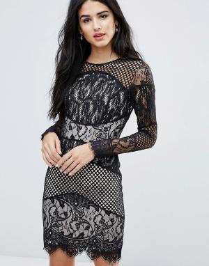 Forever Unique Block Lace Mini Bodycon Dress. Цвет: черный