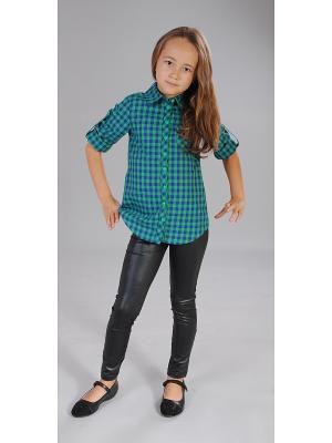 Рубашка Милашка Сьюзи. Цвет: зеленый, синий