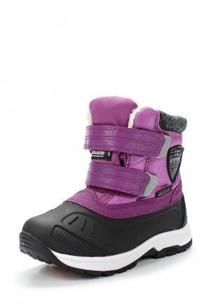 Ботинки Icepeak. Цвет: фиолетовый
