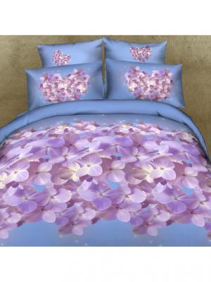 Постельное белье Nega 1,5 сп. Buenas Noches. Цвет: голубой, сиреневый