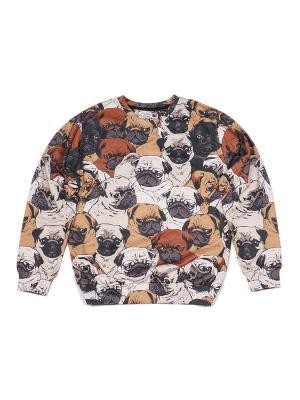 Свитшот Pugs FUSION. Цвет: коричневый, светло-коричневый
