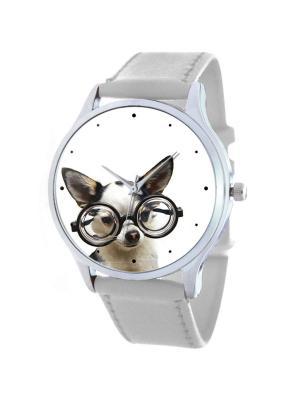 Дизайнерские часы Chihuahua Glam Tina Bolotina. Цвет: черный, серый, белый