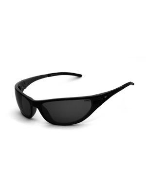 Cолнцезащитные очки Exenza. Цвет: черный, серый