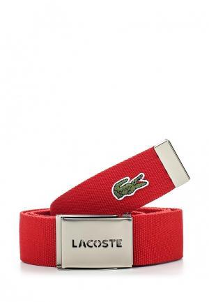 Ремень Lacoste. Цвет: красный