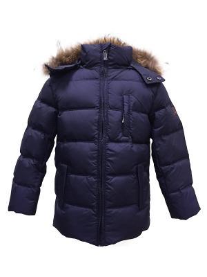 Куртка DIALINI. Цвет: темно-синий