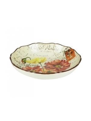 Набор из 4-х тарелок суповых 23 см Парижские маки Certified International. Цвет: темно-красный, бежевый, малиновый