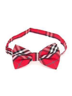 Галстук-бабочка Churchill accessories. Цвет: черный, красный, белый, темно-синий, синий