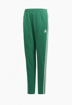 Брюки спортивные adidas. Цвет: зеленый