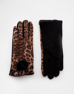 Pia Rossini Перчатки с леопардовым принтом. Цвет: коричневый