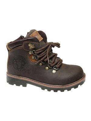 Ботинки Сказка. Цвет: темно-коричневый