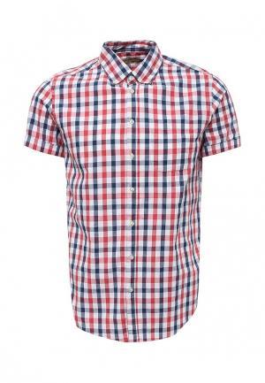 Рубашка Piazza Italia. Цвет: разноцветный