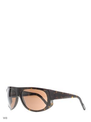 Солнцезащитные очки B 53 C2 Borsalino. Цвет: коричневый