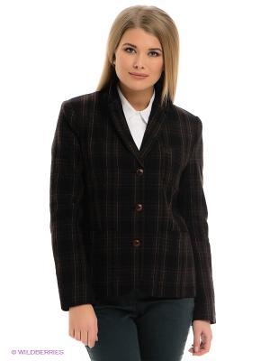 Пиджак Fred Perry. Цвет: черный, серый, темно-зеленый