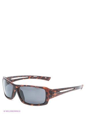 Солнцезащитные очки Polaroid. Цвет: коричневый, черный