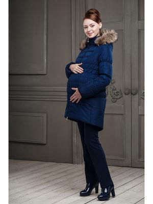 Куртка DIDILIYA. Цвет: синий