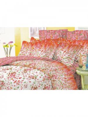 Постельное белье 2 СП Seta. Цвет: рыжий, лиловый
