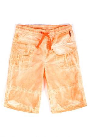 Брюки Coccodrillo. Цвет: оранжевый