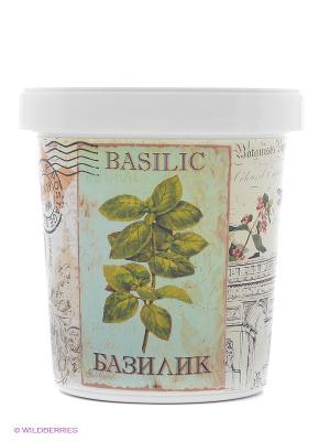 Набор для выращивания Базилик Rostokvisa. Цвет: зеленый, желтый