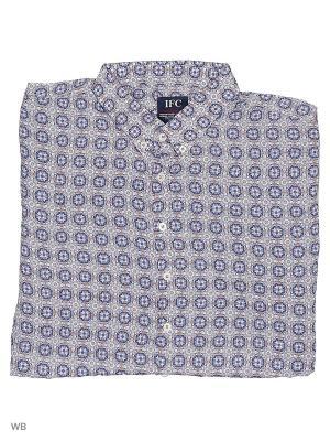 Рубашка IFC. Цвет: белый, синий, бежевый