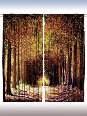 Комплект фотоштор из полиэстера высокой плотности Красота деревьев, 290*265 см Magic Lady. Цвет: коричневый, оранжевый