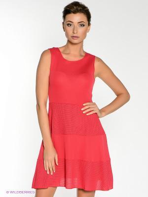 Платье COMPAGNIA ITALIANA. Цвет: коралловый