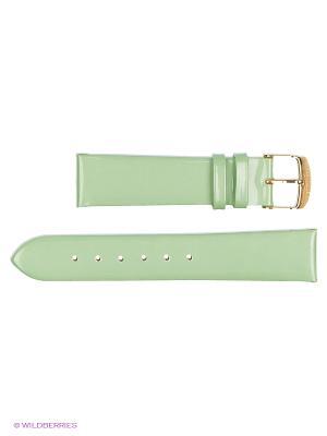Ремень д/часов, ЛАК, без строчки J.A. Willson. Цвет: светло-зеленый