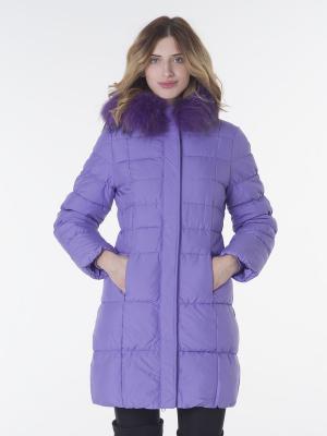 Куртка EPATAGE. Цвет: темно-фиолетовый