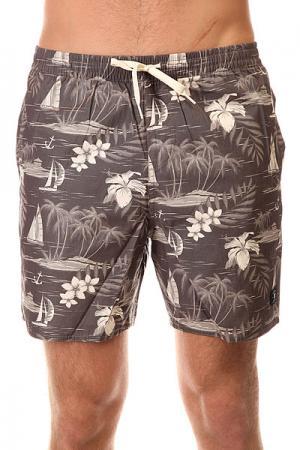 Шорты пляжные DC Cercius 16.5 Jamv Cruiser Island Black Shoes. Цвет: серый