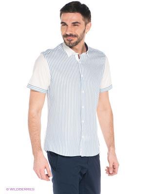 Рубашка MONDIGO. Цвет: белый, голубой