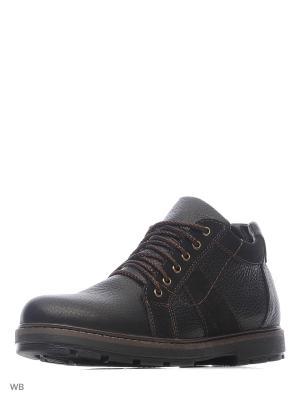 Ботинки ZET. Цвет: коричневый, черный
