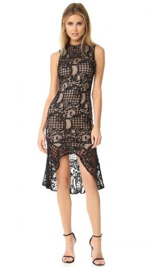 Кружевное платье-футляр с расклешенным низом Ali & Jay. Цвет: голубой