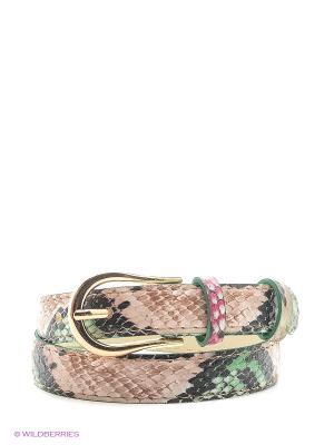 Ремень Vittorio Richi. Цвет: зеленый, бежевый