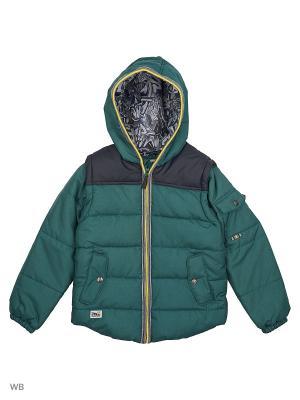 Куртка ACOOLA. Цвет: зеленый