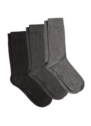 Комплект из 3 пар базовых носков OSTIN