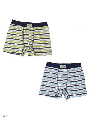Трусы боксеры для мальчиков 2 шт Oztas kids' underwear. Цвет: зеленый, голубой