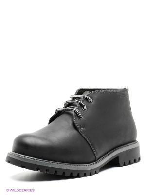 Ботинки PIRANHA. Цвет: черный