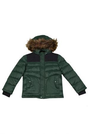 Куртка ASTON MARTIN. Цвет: зеленый