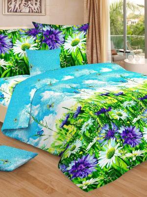 Комплект постельного белья, евро, бязь, пододеяльник на молнии Letto. Цвет: голубой,синий,зеленый