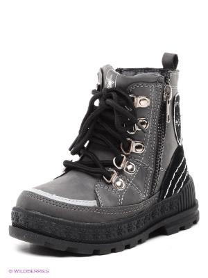 Ботинки Bebendorff. Цвет: темно-серый