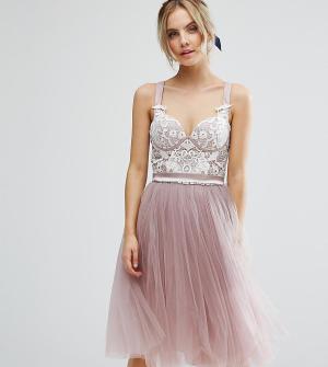 Chi London Petite Платье для выпускного с корсетным топом и тюлевой юбкой. Цвет: розовый