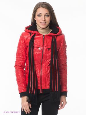 Куртка STEFANO FERRI. Цвет: красный, черный