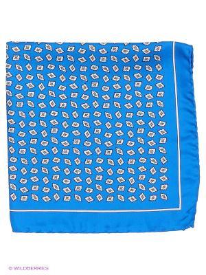 Платок-паше Troy collezione. Цвет: синий, белый
