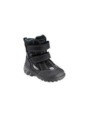 Ботинки TRACK UNO ECCO. Цвет: черный