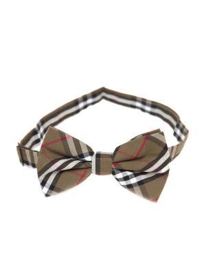 Галстук-бабочка Churchill accessories. Цвет: оливковый, белый, красный, синий, хаки, черный