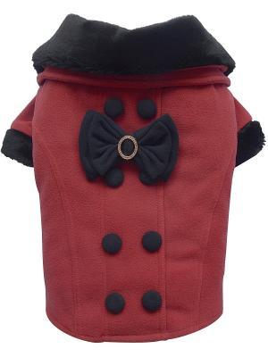 Пальто Doggy Dolly. Цвет: красный