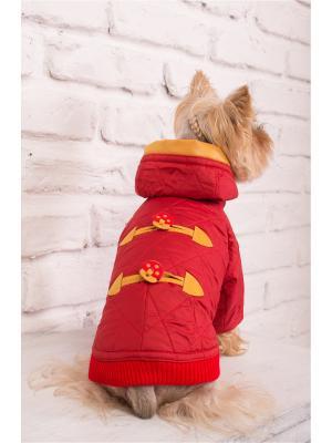 Куртка Демисезон PATRIK ОЗОРНИК. Цвет: красный, желтый