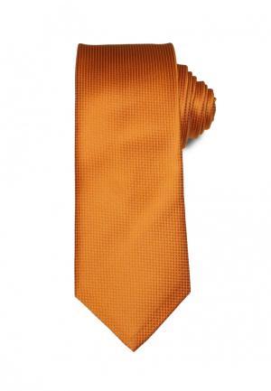 Галстук Stefano Danotelli. Цвет: оранжевый
