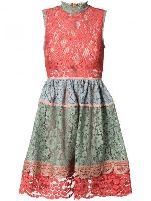 Приталенное кружевное платье Alexis. Цвет: розовый и фиолетовый