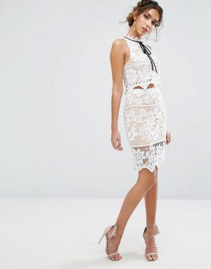 Endless Rose Кружевная юбка с цветочным узором. Цвет: мульти