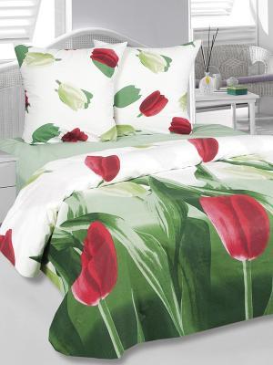 Комплект постельного белья Тюльпаны Тет-а-Тет. Цвет: белый, зеленый, красный